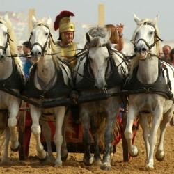La course de chars romains - Spectacle équestre Aventure au galop