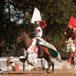 spectacle-equestre-chevalerie-ranrouet-2016-petit-bleus-photos-img_0275