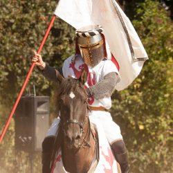 spectacle-equestre-chevalerie-ranrouet-2016-petit-bleus-photos-img_0282