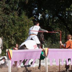spectacle-equestre-chevalerie-ranrouet-2016-petit-bleus-photos-img_0310