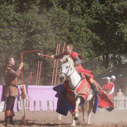 spectacle-equestre-chevalerie-ranrouet-2016-petit-bleus-photos-img_0311