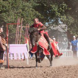 spectacle-equestre-chevalerie-ranrouet-2016-petit-bleus-photos-img_0317