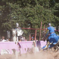 spectacle-equestre-chevalerie-ranrouet-2016-petit-bleus-photos-img_0376