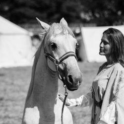 spectacle-equestre-chevalerie-ranrouet-2016-petit-bleus-photos-img_0401