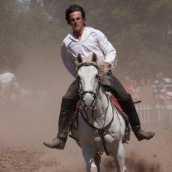 spectacle-equestre-chevalerie-ranrouet-2016-petit-bleus-photos-img_0418