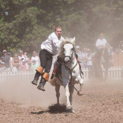 spectacle-equestre-chevalerie-ranrouet-2016-petit-bleus-photos-img_0427