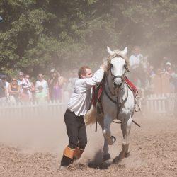 spectacle-equestre-chevalerie-ranrouet-2016-petit-bleus-photos-img_0428