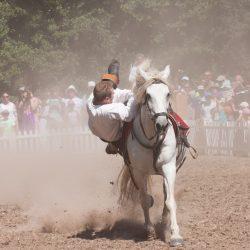 spectacle-equestre-chevalerie-ranrouet-2016-petit-bleus-photos-img_0429
