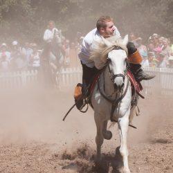 spectacle-equestre-chevalerie-ranrouet-2016-petit-bleus-photos-img_0430