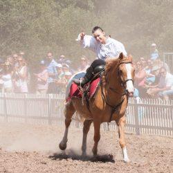 spectacle-equestre-chevalerie-ranrouet-2016-petit-bleus-photos-img_0457