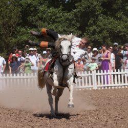 spectacle-equestre-chevalerie-ranrouet-2016-petit-bleus-photos-img_0477