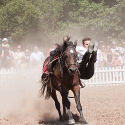 spectacle-equestre-chevalerie-ranrouet-2016-petit-bleus-photos-img_0480