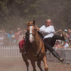 spectacle-equestre-chevalerie-ranrouet-2016-petit-bleus-photos-img_0486