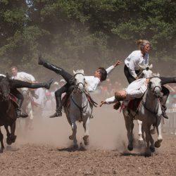 spectacle-equestre-chevalerie-ranrouet-2016-petit-bleus-photos-img_0491