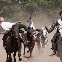 spectacle-equestre-chevalerie-ranrouet-2016-petit-bleus-photos-img_0494