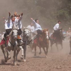 spectacle-equestre-chevalerie-ranrouet-2016-petit-bleus-photos-img_0496