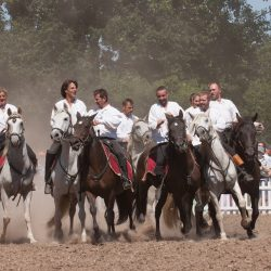 spectacle-equestre-chevalerie-ranrouet-2016-petit-bleus-photos-img_0503