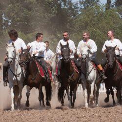 spectacle-equestre-chevalerie-ranrouet-2016-petit-bleus-photos-img_0504