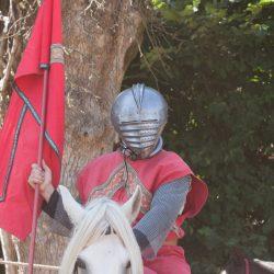 spectacle-equestre-chevalerie-ranrouet-2016-petit-bleus-photos-img_0537