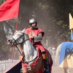 spectacle-equestre-chevalerie-ranrouet-2016-petit-bleus-photos-img_0546