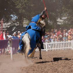 spectacle-equestre-chevalerie-ranrouet-2016-petit-bleus-photos-img_0586
