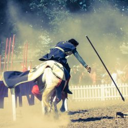spectacle-equestre-chevalerie-ranrouet-2016-petit-bleus-photos-img_0589