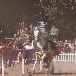 spectacle-equestre-chevalerie-ranrouet-2016-petit-bleus-photos-img_0610