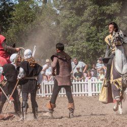 spectacle-equestre-chevalerie-ranrouet-2016-petit-bleus-photos-img_0629