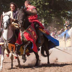 spectacle-equestre-chevalerie-ranrouet-2016-petit-bleus-photos-img_0638