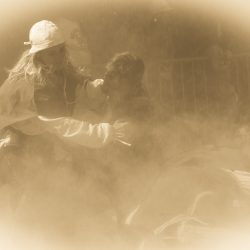 spectacle-equestre-chevalerie-ranrouet-2016-petit-bleus-photos-img_0697