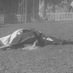 spectacle-equestre-chevalerie-ranrouet-2016-petit-bleus-photos-img_0701